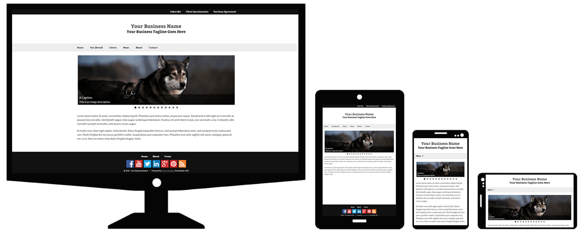 responsive-themes-min